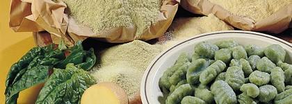 cucina,gnocchi di spinaci,gnocchi di ricotta,ricetta gnocchi,gnocchi di patate,ricette,ricetta
